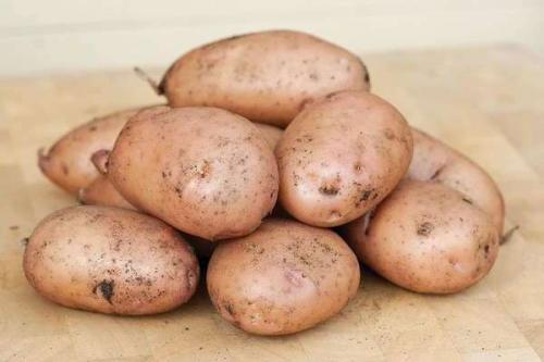 Жуковский сорт картошки. Картофель Жуковский: описание и основные характеристики сорта