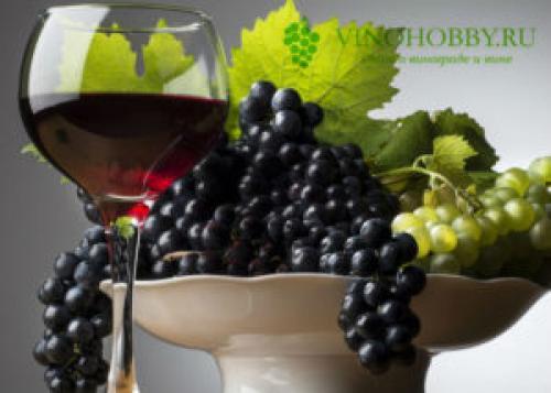 Как поставить вино из винограда в домашних условиях простой рецепт. Универсальная технология приготовления виноградного вина